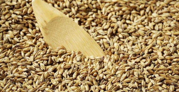 Homebrewers guide to coloured malt